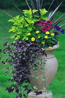 6 simple tricks for beautiful garden containers gardener