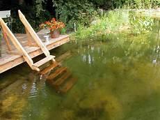 Mit Welchen Kosten F 252 R Einen Schwimmteich Ist Zu Rechnen
