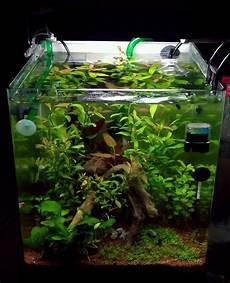 nano aquarium 30l aquarium nano 30l par alesk