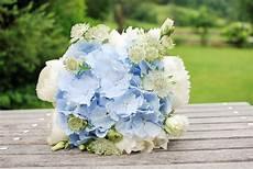 Brautstrauß Hortensien Und - hellblauer hortensien brautstrau 223 mit pfingstrosen und