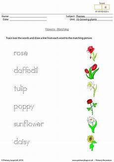 plants worksheets for primary 13486 primaryleap co uk word and picture matching flowers worksheet with images worksheets