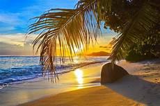 Malvorlagen Meer Und Strand Japan Sand Palm Sun Clouds Hd Wallpaper