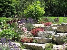 Steingarten Gestalten Und Bepflanzen So Wird Es Gemacht