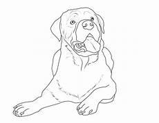 kostenlose malvorlage hunde rottweiler zum ausmalen