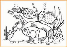Unterwasserwelt Ausmalbilder Kostenlos Unterwasserwelt Ausmalbilder Zum Ausdrucken Kostenlos