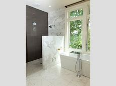 Half Wall Shower Ideas, Pictures, Remodel and Decor