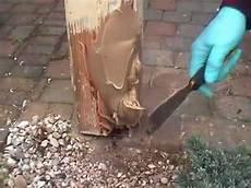 morsche balken austauschen morsches holz reparieren mit renoflex