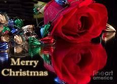 merry christmas rose card photograph by clark
