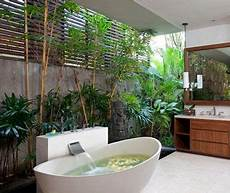 Jungle Bathroom Ideas by Bathroom Turned Into A Jungle With Plants Trees And