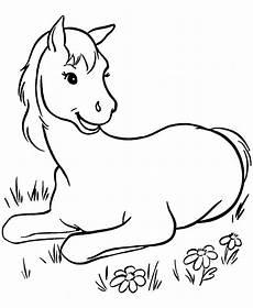 Pferde Ausmalbilder Klein Ausmalbilder Pferde Bild Kleine Fohlen Auf Der Wiese