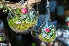plante suspendue verre suspension fleur exterieur vap vap
