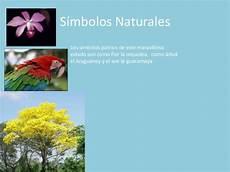 imagenes de los simbolos naturales del estado bolivar estado amazonas juaaaan terminado