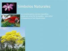 simbolos naturales tachira estado amazonas juaaaan terminado