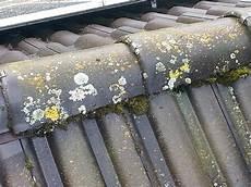 Dachreinigung Dachziegel Reinigen Beton Pflaster