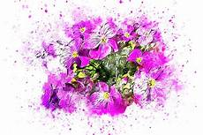 Gambar Abstrak Bunga Harian Nusantara