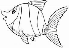 ausmalbilder fische 10 ausmalbilder tiere
