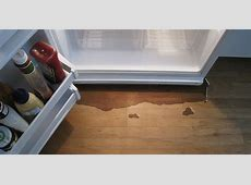 Why Does My Refrigerator Leak Water,Refrigerator Leaking Water On Floor – How To Stop Leaks On,Refrigerator leaking water on floor|2020-05-25