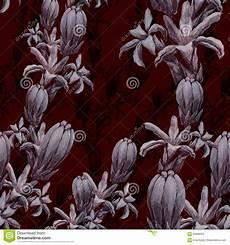 tuberose fiori tuberose fiori e germogli collage dei fiori