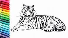 draw so animals coloring pages 17359 drawing and coloring a tiger how to draw animals color pages for children