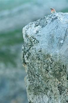 Unteres Bauchfett Loswerden - unteres bauchfett loswerden haus www bgf bi