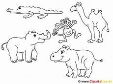 Bilder Zum Ausmalen Zoo Ausmalbilder Tiere