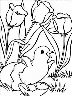 Mewarnai Gambar Bunga Tulip Cantik Dan Anak Ayam Lucu
