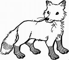 Www Malvorlagen Sterne Cing Fuchs Straffiert Ausmalbild Malvorlage Tiere