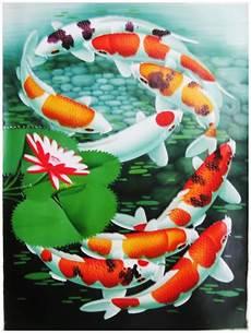 Petaniikan Ikan Koi Ikan Pembawa Hoki