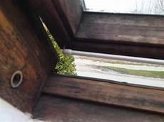 Schwarzschimmel Am Holzfenster Wie Bekommt Ihn Weg
