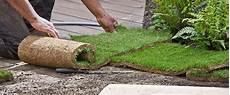 prix du gazon au m2 refaire sa pelouse quel est le prix gazon au m2
