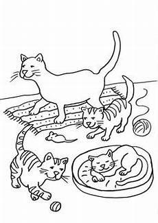 Malvorlage Katze Bunt Katze Ausmalen 127 Malvorlage Katzen Ausmalbilder