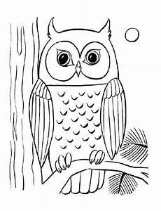 Sketsa Gambar Burung Hantu Terbaru Gambarcoloring
