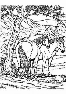 malvorlagen pferde zum ausmalen zum drucken bestimmt f 252 r