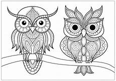 two owls with simple patterns on branch owls