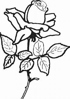 Malvorlagen Zum Ausdrucken Blumen Ausmalbilder Blumen 19 Ausmalbilder Malvorlagen