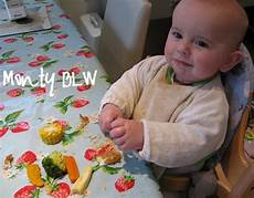 baby led weaning rezepte my baby led weaning recipes confidential