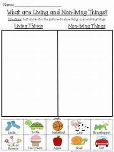 sorting living things worksheets 7894 free urinary system human systems worksheets samreen systems human