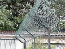 Cl 244 Ture Grillage Du Jardin Pour Chat