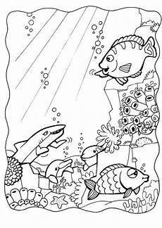 coloring page dolphins and fish free printable coloring