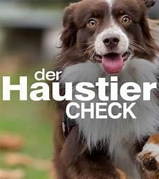 Der Haustier Check Zdfmediathek