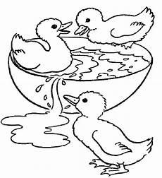 Lustige Enten Ausmalbilder Ente Ausmalbilder Malvorlagen Tiere Ausmalbilder