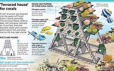 reef structure to promote coral growth installed off islands environment news top