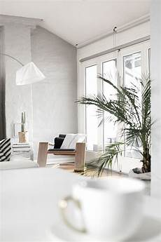 white grey black green plants home home decor