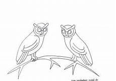 Vogel Malvorlagen Instagram Malvorlage Vogel Auf Ast