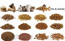animal feed pellet machine lg 3