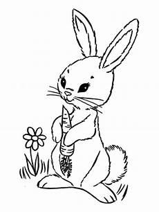 malvorlagen zum ausmalen ausmalbilder kaninchen gratis 3