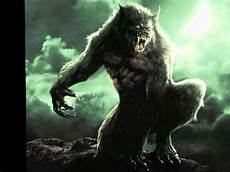 Helsing Wolf Wallpaper