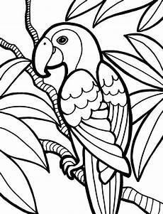 jungle animals coloring pages for kindergarten 17049 collection of jungle clipart free best jungle clipart on clipartmag