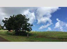 zuckerberg kauai land