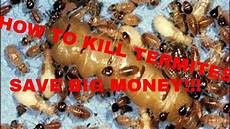 do it yourself wohnen how to kill termites do it yourself and save big money
